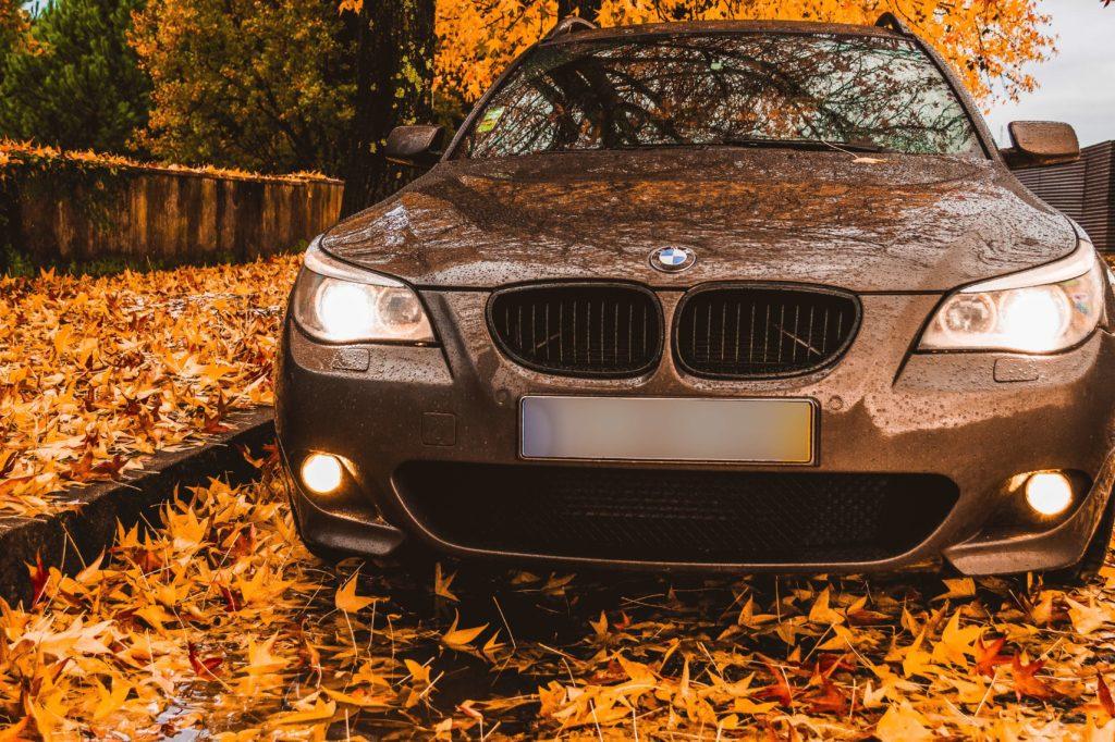 autumn-driving